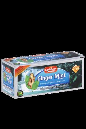 Caribbean Dreams Ginger Mint Tea (24 pack) | Caffeine Free